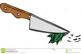 isolated vector illustration of kitchen knife chopping herbs
