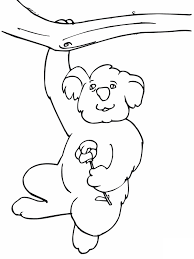 koala coloring page 6681 1048 821 free printable coloring pages