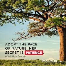 emerson quote kindness adopt the pace of nature her secret is patience u201d u2014ralph waldo