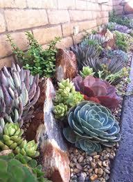 Front Yard Desert Landscape Mediterranean Exterior Best 25 Succulent Landscaping Ideas On Pinterest Outdoor Cactus
