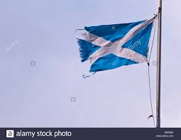 Scottish Pirate Flag Ripped Flag Stock Photos U0026 Ripped Flag Stock Images Alamy