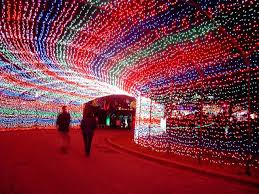 Christmas Lights Texas 57 Best Holidays In Austin Images On Pinterest Austin Tx Texas