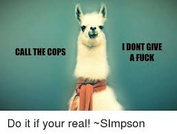 I Dont Give A Fuck Meme - call the cops i don t give a fuck do it if your real simpson i