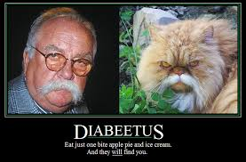 Diabetes Meme Wilford Brimley - not your average fat kid 2013 10 13