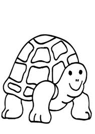 cute baby sea turtle coloring pages