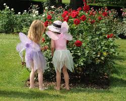 facts u2014 children u0027s garden montessori