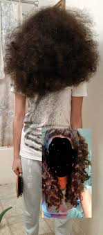 Frizzy Hair Meme - why you never brush curly hair funny
