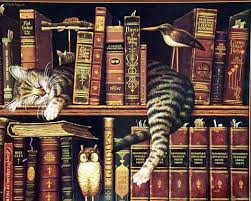cats owl book library books wallpaper 642212 wallbase cc