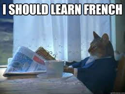 What Is Meme In French - i should learn french morning realization newspaper cat meme