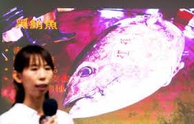 Black Purple Pink Green Peace by Mitsui Tuna Clears Greenpeace Tests Taipei Times