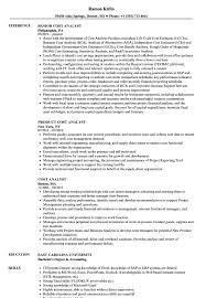 resume format for cost accountants association in united cost analyst resume sles velvet jobs