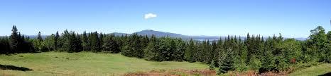 moosehead lake region higgins real estate