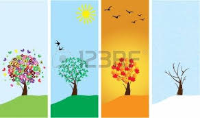 vector season banners with season trees royalty free cliparts