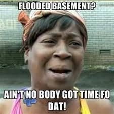 Flooded Basement Meme - excuse me sir do you have a minute to talk about global warming