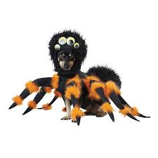 pet halloween costumes uk 13 barking mad dog costumes for national dress up your pet day