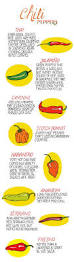 112 best chili pepper types and info images on pinterest