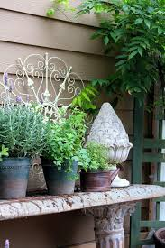 Urban Herb Garden Ideas - terrariums and other small space and urban gardening ideas the