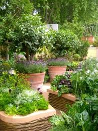 how to cut back plants to create clean lines and tidy gardens