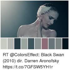 Black Swan Meme - 25 best memes about black swan 2010 black swan 2010 memes