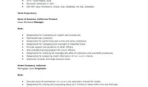 resume exles with no work experience exles of student resumes with no work experience resume for no