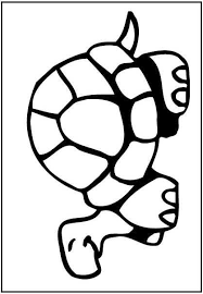 87 coloring turtles images turtle coloring