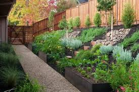 large hillside landscaping with ornamental plants and using
