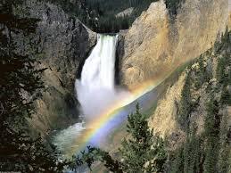 yellowstone national park information u0026 facts tiverton foundation