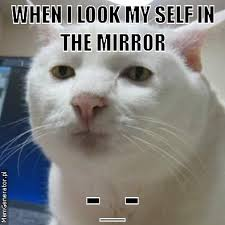 Looking In The Mirror Meme - looking in the mirror meme 28 images what if when you look in