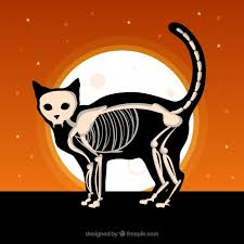 halloween background with cat and skeleton vector free download