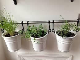 window planters indoor kitchen modern kitchen indoor herb garden adding an diy wall