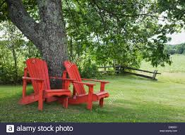 two red wooden adirondack chairs under a tree in a residential