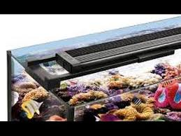 fluval led light 48 fluval sea marine reef performance led lighting youtube