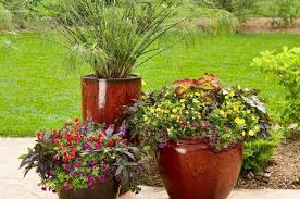 Small Garden Space Ideas Container Gardening Ideas Gardening Small Space And Container
