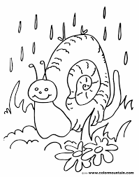 snail coloring pages newcoloring123
