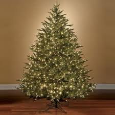 stunning ideas best pre lit trees world s prelit fraser