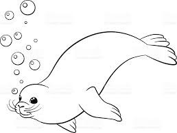 coloring pages little cute seal swims stock vector art 547408028