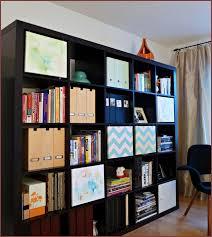 Expedit Ikea Bookcase Ikea Bookcase Expedit Home Design Ideas