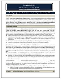 sales marketer resume