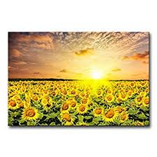 Amazon Modern Canvas Painting Wall Art The Picture For Home