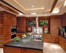kitchen cabinet countertop houzz