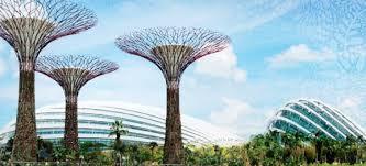 solar tree earthtechling