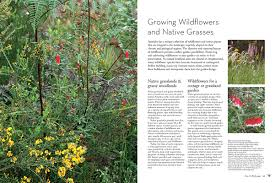 australian native plants online booktopia birdscaping australian gardens using native plants to