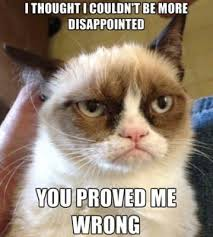 Best Grumpy Cat Memes - the 30 best grumpy cat memes you can respond to emails with funny