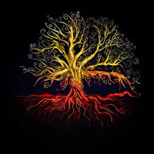 tree symbol meaning 249 best tree of life images on pinterest tree of life