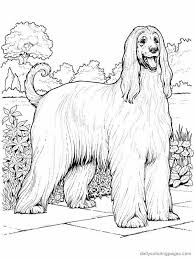323 dogs images coloring books drawings