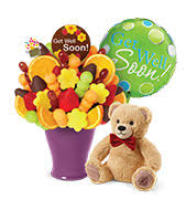 get well soon bears delivery hospital gift shop same day hospital delivery of get well gifts