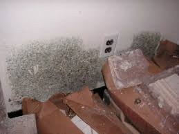 how to get rid of mold in the bathroom or in a hidden area hubpages
