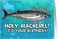 fishing greeting cards from greeting card universe