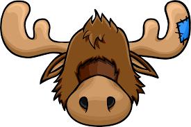 zeus the moose head club penguin wiki fandom powered by wikia