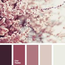 Room Colors Ideas Best 25 Bedroom Colors Ideas On Pinterest Bedroom Paint Colors